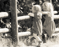 Best friends forever (Tommy Hyland) Tags: girls friends light summer cute youth fence children happy sitting child dress little young adorable happiness best ladys moment talking bestfriends bff friendships littleladys