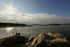gras (geo_rie) Tags: sea sweden baltic september sverige 2014 eos50d gras