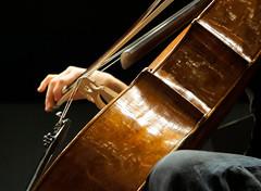 Violoncello (Renato Morselli) Tags: music teatro hand theatre cello orchestra musica mano backstage legno corde prove violoncello strumento