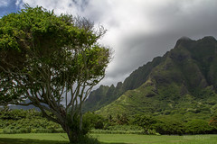 Oahu, Hawaiian Islands (alienshores52) Tags: hawaii oahu