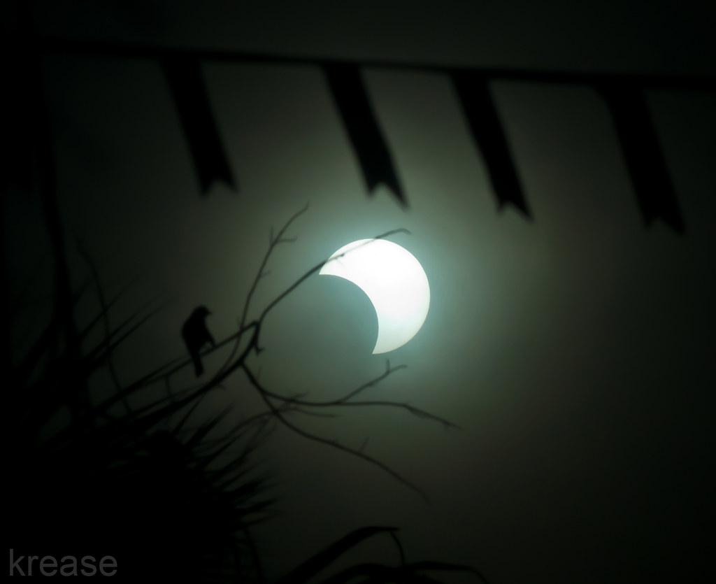 e22771e434 partial solar eclipse (Kristoffer E.) Tags  cats nature landscape  structures sunsets