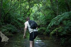 Spirit of Adventure, Iriomote-jima, Okinawa (SamKent22) Tags: man green nature japan forest trekking walking outdoors island rainforest asia hiking exploring explorer steam adventure foliage jungle vegetation okinawa lush iriomote iriomotejima streamtrekking