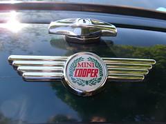 '90-'00 Rover Mini Cooper 1275 (Foden Alpha) Tags: plate rover columbia license minicooper british mapleridge collector 1275 b28499