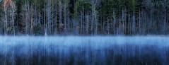 blue mist (paulh192) Tags: autumn trees cold water fog landscape michigan ngc grandrapids bluefog mediumformatdigital