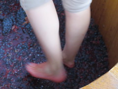 Fast furious feet (jamica1) Tags: house canada feet rose bc okanagan bare columbia east winery british kelowna stomp grape