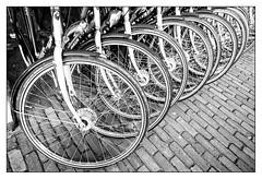 Wheels (leo.roos) Tags: wheels bikes zeeland bicycles flektogon a7 fietsen fiets exakta czj carlzeissjena darosa fietswielen flektogon204 leoroos