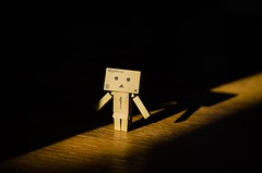 Out of the Shadows (Number Johnny 5) Tags: light shadow 50mm danbo d7000