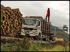 MAN TGS 33.540 L 6x4 - KRIPPENDORF - OE-K3100 - D (3) (PS-Truckphotos #pstruckphotos) Tags: man tgs 33540 l 6x4 krippendorf oek3100 d holztransport timbertruck lastbil truck lorry lkw lasbil deutschland europa europe belgien niederlande tyskland germany pstruckphotos lkwfotos truckpics truckphotos lkwpics supertrucks lastwagen trucking fotos truckfotos lastwagenfotos lastwagenbilder timber langholz kurzholz woodtruck stm strängnäs meet 2015 björkvik sweden sverige schweden showtrucks trucks truckmeet strängnästruckmeet truckspotting truckspotter truckfoto lkwbilder supertruck camion timbertrucking holztrucking holz holzlastwagen pstruckfotos lkwfotografie timbertransport r