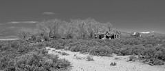 Minerva, Nevada (joeqc) Tags: white black abandoned blancoynegro monochrome rural canon lost mono nevada neglected nv forgotten decrepit derelict decayed dilapidated collapsed t3i efs1855 greytone rurex oncewashome lonex