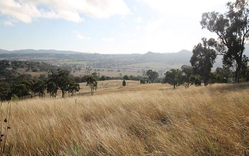 Lot 1 Borambil Creek Road, Willow Tree NSW 2339