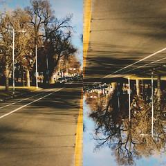 062 : 365 : VI (Randomographer) Tags: project365 abstract image street road pavement asphalt tree digital art photoshop manipulation cut day photography 365 62 vi