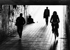 Viendo la vida pasar (Haciendo clack) Tags: haciendoclack jesúsgonzález tunel arcoladrillo blanco y negro blackandwhite valladolid españa spain europa europe bicicleta sombras siluetas
