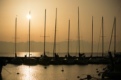 Contre-jour sur le port (Tiolu.) Tags: contrejour port eau lac soleil bateaux mats backlight sun lake