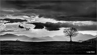 il tramonto in bianco e nero