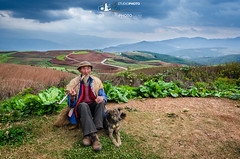 Donchuan -Terres Rouges- - Peace with nature (gaelmonk) Tags: china chine paysage dongchuan landscape terresrouges test red earth portrait scenary nature wild farmer dog beautiful agricoles agricole planting icone old man vieux monsieur chinois chinese countryside campagne