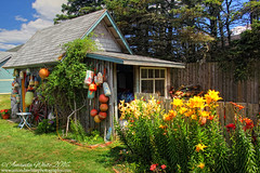 Bill's Shed (sminky_pinky100 (In and Out)) Tags: novascotia travel tourism landscape scenic colourful omot cans2s shed buoys outside lilies flowers