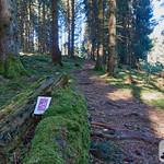 Wandern: Nationalpark-Traumschleife Trauntal-Höhenweg thumbnail