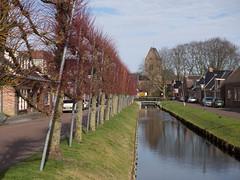 Loppersum Schipsloot (Jeroen Hillenga) Tags: loppersum schipsloot groningen netherlands nederland kanaal sloot linden lagestraat dorp village
