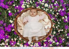 #FlowerFieldBasket (Krome Studio) Tags: mdchen weiblich liegen baby klein kleinkind asiatisch geborgen weich bett kuschelig s schlitzaugen decke portrt freude frhlich gesicht kindheit unschuldig unschuld gesund gesundheit sorglos sorgenlos kleid rosa oben vonoben germany