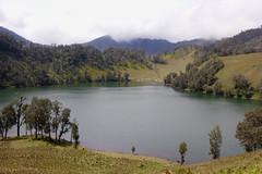 Ranu Kumbolo lake, Bromo-Tengger-Semeru National Park (elly.sugab) Tags: lake danau ranukumbolo tnbts bromo tengger semeru kumbolo nature