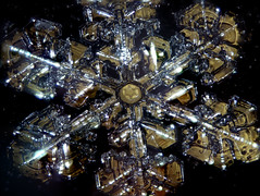 11feb17f (peterobrien186) Tags: pleochroic crystal polarized reflection specular snow ice winter macro nature