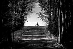 Biking in the forest (HMeye Photo) Tags: a7 infrared sony taanayel bekaa lebanon mitakon speedmaster 50095 50mm f095 095