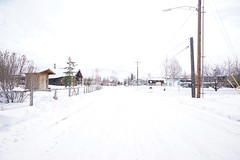 So white. // Snow Winter Cold Temperature Outdoors Tree Day Nature No People Sky at City of Fairbanks (spieri_sf) Tags: snow winter coldtemperature outdoors tree day nature nopeople sky