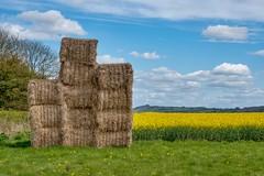 Bale out (Evoljo) Tags: wilton straw bales field farm crops wiltshire sky hdr cloud nikon d500