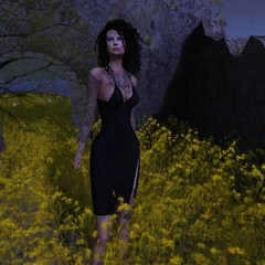 POSIE - Iggy Dress FATPACK_001 (MISS V♛ BELGIUM 2015♛MISS V♛ BELGIUM 2016♛) Tags: orelanaresident blog blogs glamour glamourous girl girly pretty pose blogger beauty bodymesh bento secondlife style sl fashion fashionpixel femalewear femaleclothing france belgique mesh maitreya meshhead new news virtual virtualfashion casual casulwear woman womanfashion avatar hair hairs exterieur clothing outfit tattoo truth posie macdesignlifestyle theavenue