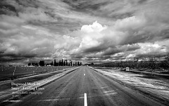Into the Storm (RedHatGal: Barbara Butler/FireCreek Photography) Tags: stormclouds storm 2laneroad vineyard rural farm blackwhite outdoor landscape kerncounty centralvalley ca barbarabutlerphotography firecreekphotography redhatgal dogwood52week16 dogwood2017