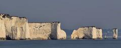 Old Harry Rocks, Dorset Coastline (6) (Richard Collier - Wildlife and Travel Photography) Tags: england seascape landscape dorset jurassic costal coastalcliffs oldharryrocks