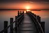 Into the sun (Paulo N. Silva) Tags: