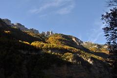 DSC_4812 Otoo en el Parque Nacional de Ordesa (David Barrio Lpez) Tags: espaa spain nikon huesca aragon otoo pirineos ordesa d90 altoaragon nikond90 davidbarrio parquenacionaldeordesa pirineooscense davidbarriolpez