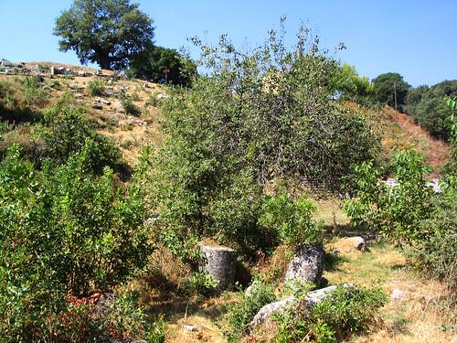 Sanctuary of Despoina at Lykosoura, Arkadia 52