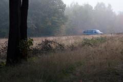 (DhkZ) Tags: autumn ontario canada fall field fallcolors van muskoka lakeofbays baysville zuiko100mmf28 canon5dii