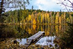 IMG_2202.jpg (Olle Stjarnkvist) Tags: höst skog solnedgång valhall autumn colors bridge reflection forest woods lake sweden