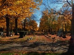 Niles Cemetery (tquist24) Tags: autumn fall cemetery geotagged nikon michigan niles nikoncoolpixaw100