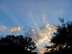 Sun rays at sunset