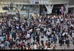Shibuya Crossing, Tokyo, Japan (JH_1982) Tags: japan tokyo chaos crossing crowd shibuya pedestrian tquio pedestrians  nippon  japo japon giappone scramble crowded density dense tokio japn     tky