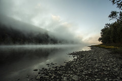 fog on the susquehanna. (stevenbley) Tags: morning trees nature water fog sunrise river pennsylvania pa susquehanna