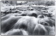 Rushing (Wolfhorn) Tags: cold nature water alaska wilderness rushing