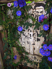 Porta Florida (Gijlmar) Tags: door brazil minasgerais southamerica brasil puerta brasilien porta porte tr brasile ouropreto deur brsil amricadosul brazili drzwi amriquedusud  amricadelsur dvee