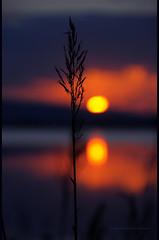 - La dimora dei ricordi - (swaily  Claudio Parente) Tags: sunset nikon tramonto tramonti toscana orbetello maremma d300 nikond300 claudioparente swaily checchino maremmans