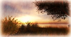 Sunset @ Frisland (Kayleigh Lavender*) Tags: sunset landscape sl secondlife paysage coucherdesoleil frisland