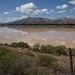 Lagoa La Angostura