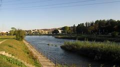 Cluj-Napoca - Someul Mic river (Bogdan Pop 7) Tags: europe romania transylvania transilvania kolozsvar cluj clujnapoca roumanie erdly erdely kolozsvr ardeal romnia klausenburg