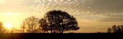 IMG_2158 (Ernst-Jan de Vries) Tags: sunrise peat veen moor turf drenthe bargerveen tamron1750f28 zonopkomst zwartemeer bourtangermoor ernstjandevries canoneos60d