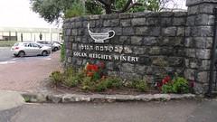 S1140203 (maaß) Tags: israel katzrin weinkellerei bäume kkljnf golanheightwinery