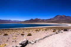 IMG_2904 (gaujourfrancoise) Tags: chile voyage travel nature landscapes chili bolivia andes paysages altiplano bolivie lagoons lagunaverde atacamadesert lagunamiscanti lagunes dsertdatacama gaujour lagunaminiqus