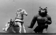 Agfa PVP 200 Cross-Processed in Kodak D-76 (SeenPhotography) Tags: bw horse canon toy toys xpro panda cross kodak flash 11 ceiling d76 tai developer 200 processing vista plus kung fu process agfa processed bounce pvp lung c41 1000fn agfaphotovistaplus200